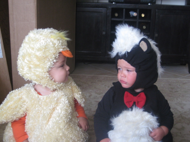 Chick and Skunk